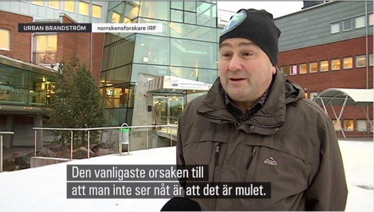 Norrskensforskaren Urban Brändström i tv-inslag